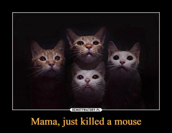Mama, just killed a mouse –