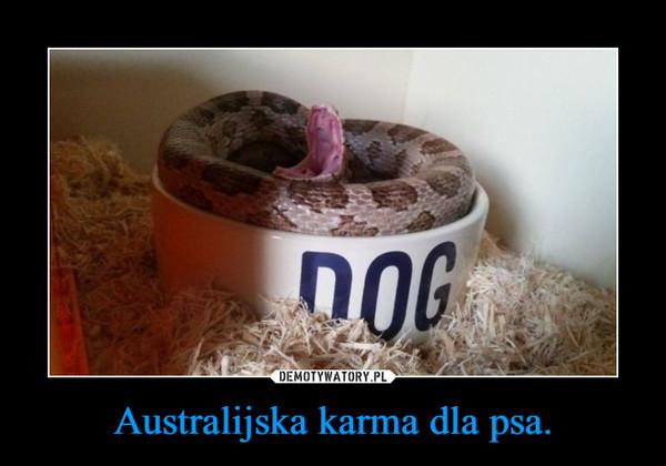 Australijska karma dla psa. –