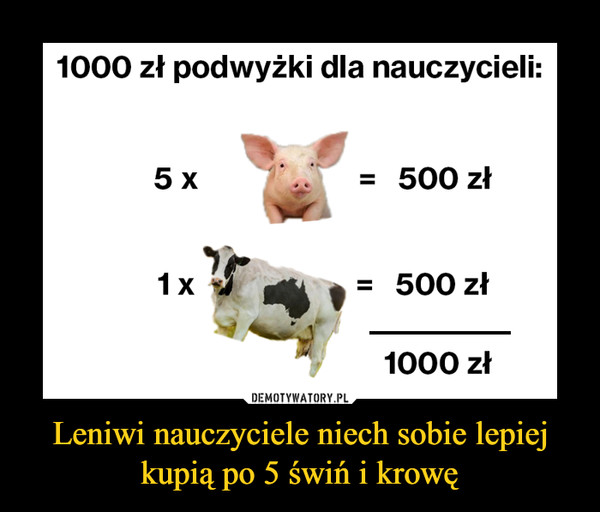 Leniwi nauczyciele niech sobie lepiej kupią po 5 świń i krowę –