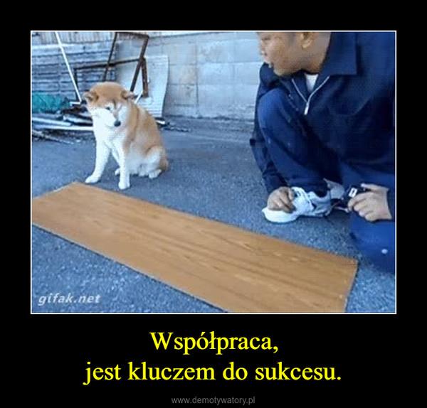Współpraca,jest kluczem dosukcesu. –