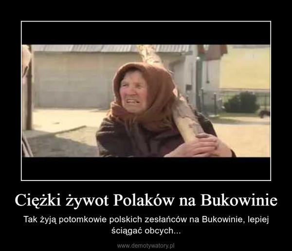 Ciężki żywot Polaków na Bukowinie – Tak żyją potomkowie polskich zesłańców na Bukowinie, lepiej ściągać obcych...