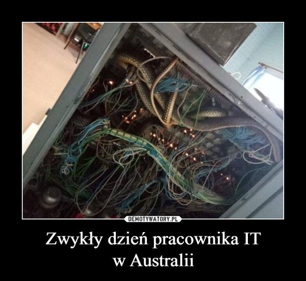 Zwykły dzień pracownika ITw Australii –