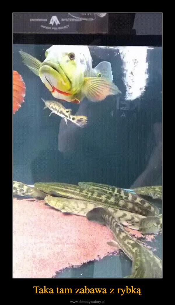 Taka tam zabawa z rybką –