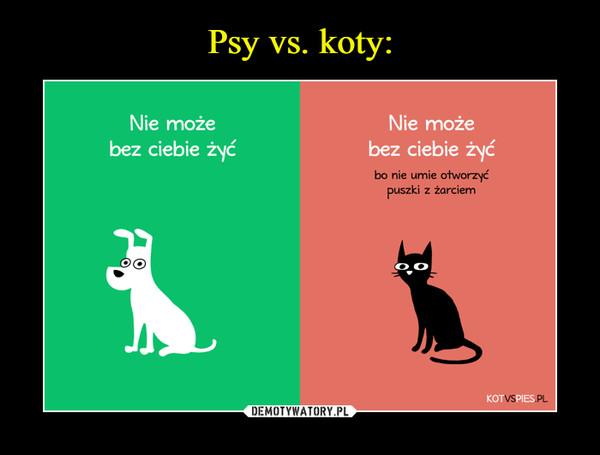 –  Psy vs. koty:Nie możeNie możebez ciebie żyćbez ciebie żyćbo nie umie otworzyćzki z żarciempus