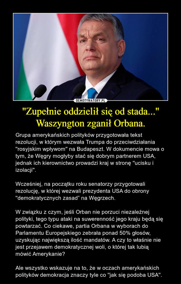 """''Zupełnie oddzielił się od stada...''Waszyngton zganił Orbana. – Grupa amerykańskich polityków przygotowała tekst rezolucji, w którym wezwała Trumpa do przeciwdziałania ''rosyjskim wpływom'' na Budapeszt. W dokumencie mowa o tym, że Węgry mogłyby stać się dobrym partnerem USA, jednak ich kierownictwo prowadzi kraj w stronę ''ucisku i izolacji''.Wcześniej, na początku roku senatorzy przygotowali rezolucję, w której wezwali prezydenta USA do obrony ''demokratycznych zasad"""" na Węgrzech. W związku z czym, jeśli Orban nie porzuci niezależnej polityki, tego typu ataki na suwerenność jego kraju będą się powtarzać. Co ciekawe, partia Orbana w wyborach do Parlamentu Europejskiego zebrała ponad 50% głosów, uzyskując największą ilość mandatów. A czy to właśnie nie jest przejawem demokratycznej woli, o której tak lubią mówić Amerykanie? Ale wszystko wskazuje na to, że w oczach amerykańskich polityków demokracja znaczy tyle co ''jak się podoba USA''."""