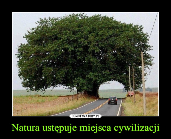 Natura ustępuje miejsca cywilizacji –
