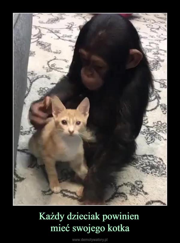 Każdy dzieciak powinien mieć swojego kotka –