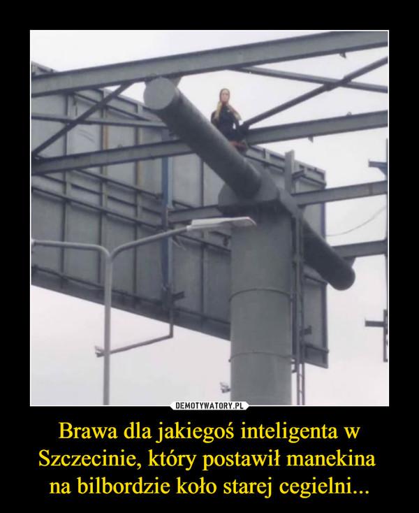 Brawa dla jakiegoś inteligenta w Szczecinie, który postawił manekina na bilbordzie koło starej cegielni... –