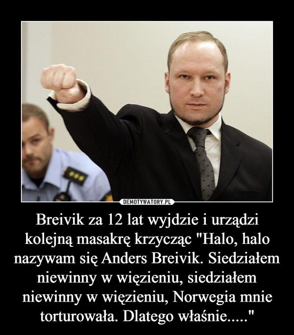 """Breivik za 12 lat wyjdzie i urządzi kolejną masakrę krzycząc """"Halo, halo nazywam się Anders Breivik. Siedziałem niewinny w więzieniu, siedziałem niewinny w więzieniu, Norwegia mnie torturowała. Dlatego właśnie....."""" –"""