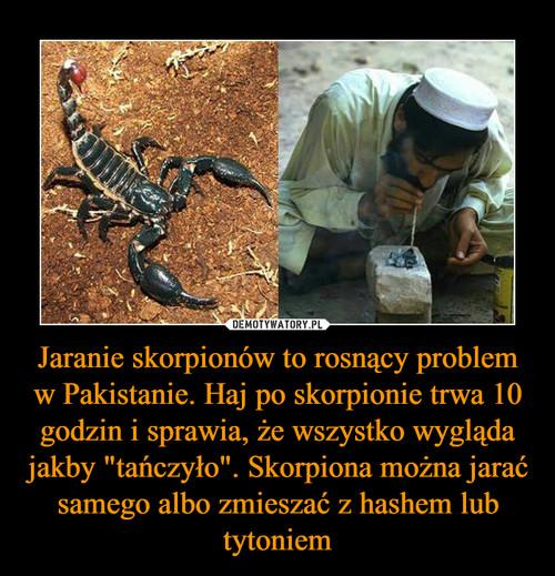 """Jaranie skorpionów to rosnący problem w Pakistanie. Haj po skorpionie trwa 10 godzin i sprawia, że wszystko wygląda jakby """"tańczyło"""". Skorpiona można jarać samego albo zmieszać z hashem lub tytoniem"""