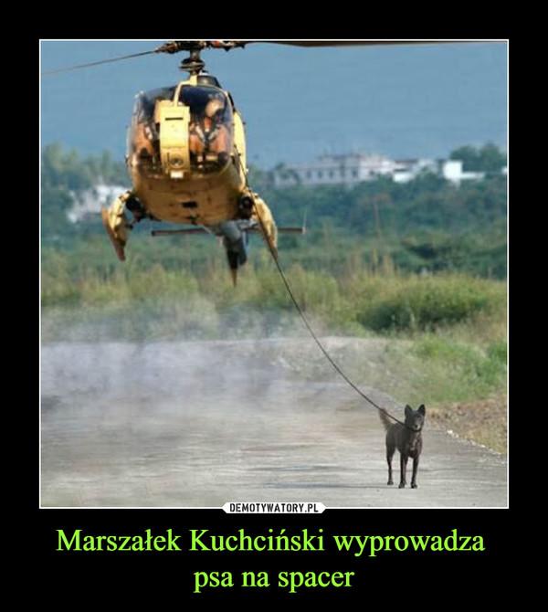 Marszałek Kuchciński wyprowadza psa na spacer –