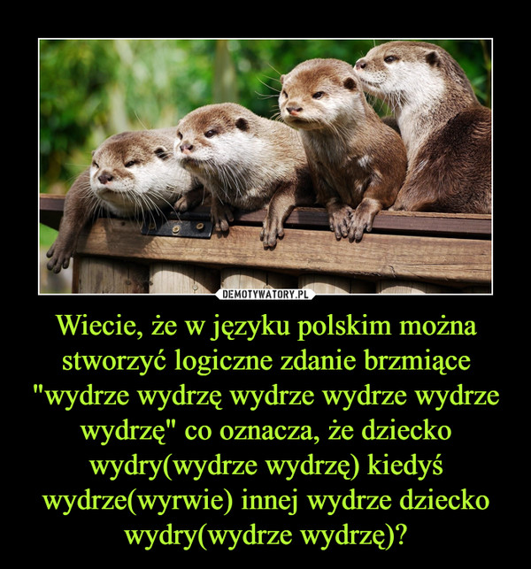 """Wiecie, że w języku polskim można stworzyć logiczne zdanie brzmiące """"wydrze wydrzę wydrze wydrze wydrze wydrzę"""" co oznacza, że dziecko wydry(wydrze wydrzę) kiedyś wydrze(wyrwie) innej wydrze dziecko wydry(wydrze wydrzę)? –"""
