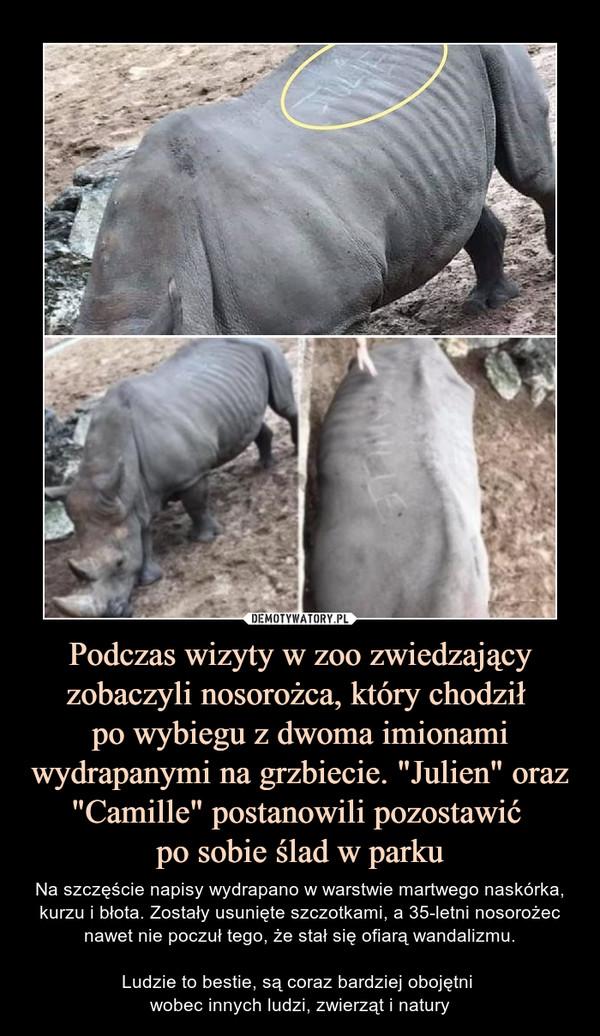 """Podczas wizyty w zoo zwiedzający zobaczyli nosorożca, który chodził po wybiegu z dwoma imionami wydrapanymi na grzbiecie. """"Julien"""" oraz """"Camille"""" postanowili pozostawić po sobie ślad w parku – Na szczęście napisy wydrapano w warstwie martwego naskórka, kurzu i błota. Zostały usunięte szczotkami, a 35-letni nosorożec nawet nie poczuł tego, że stał się ofiarą wandalizmu.Ludzie to bestie, są coraz bardziej obojętni wobec innych ludzi, zwierząt i natury"""