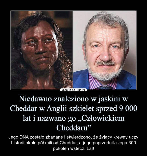 """Niedawno znaleziono w jaskini w Cheddar w Anglii szkielet sprzed 9 000 lat i nazwano go """"Człowiekiem Cheddaru"""" – Jego DNA zostało zbadane i stwierdzono, że żyjący krewny uczy historii około pół mili od Cheddar, a jego poprzednik sięga 300 pokoleń wstecz. Łał!"""