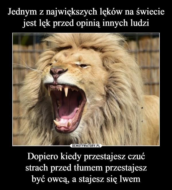 Dopiero kiedy przestajesz czućstrach przed tłumem przestajeszbyć owcą, a stajesz się lwem –