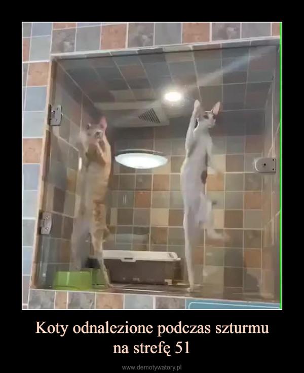 Koty odnalezione podczas szturmuna strefę 51 –