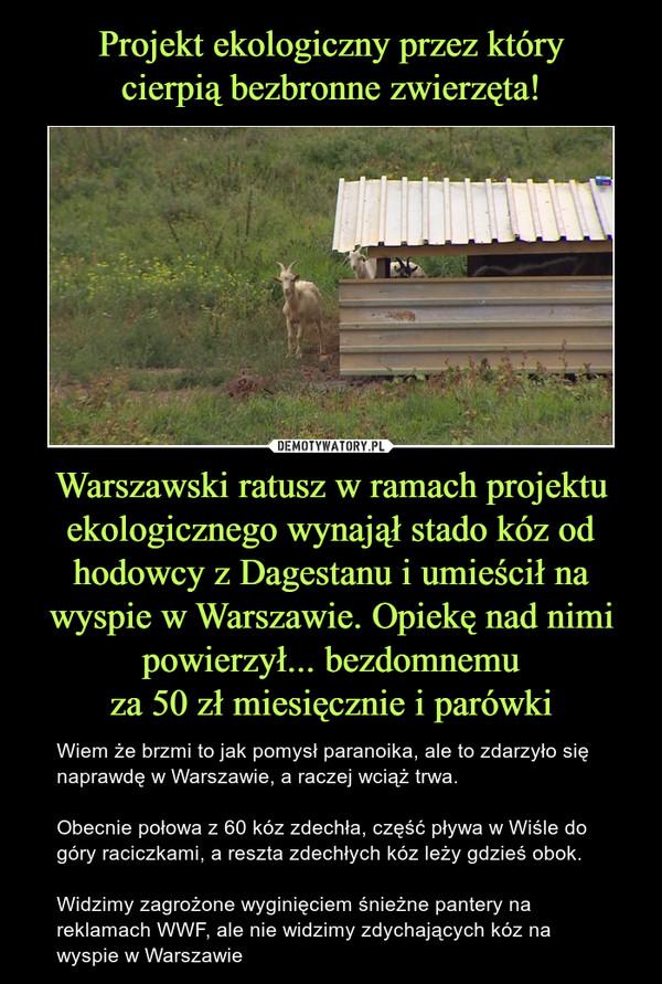 Warszawski ratusz w ramach projektu ekologicznego wynajął stado kóz od hodowcy z Dagestanu i umieścił na wyspie w Warszawie. Opiekę nad nimi powierzył... bezdomnemuza 50 zł miesięcznie i parówki – Wiem że brzmi to jak pomysł paranoika, ale to zdarzyło się naprawdę w Warszawie, a raczej wciąż trwa.Obecnie połowa z 60 kóz zdechła, część pływa w Wiśle do góry raciczkami, a reszta zdechłych kóz leży gdzieś obok.Widzimy zagrożone wyginięciem śnieżne pantery na reklamach WWF, ale nie widzimy zdychających kóz na wyspie w Warszawie