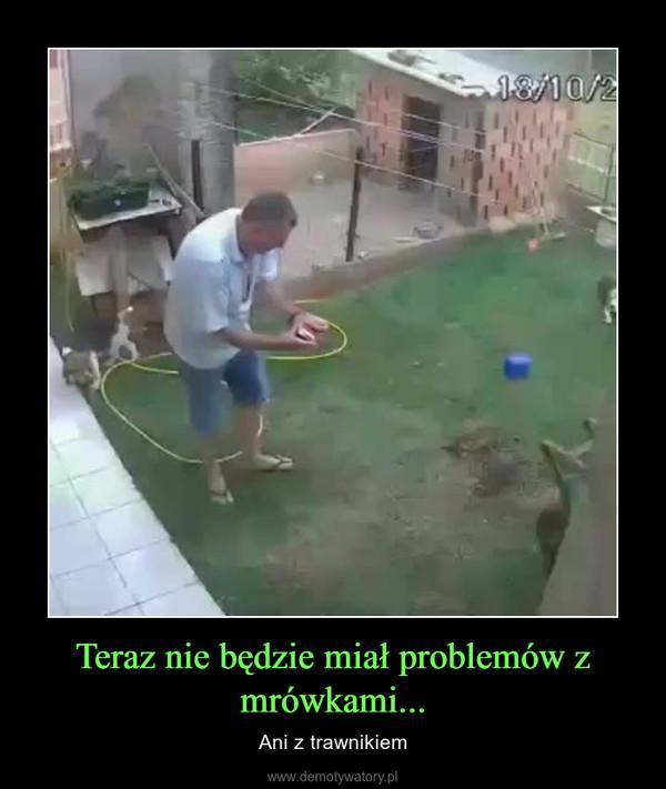 Teraz nie będzie miał problemów z mrówkami... – Ani z trawnikiem