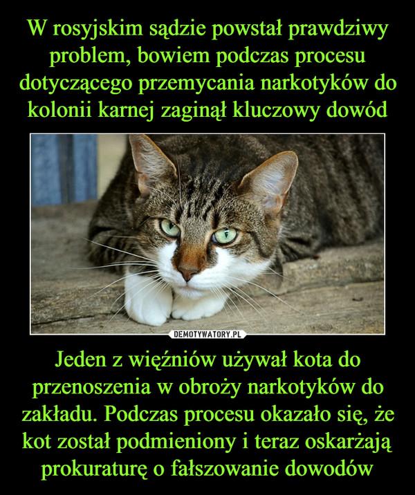 Jeden z więźniów używał kota do przenoszenia w obroży narkotyków do zakładu. Podczas procesu okazało się, że kot został podmieniony i teraz oskarżają prokuraturę o fałszowanie dowodów –