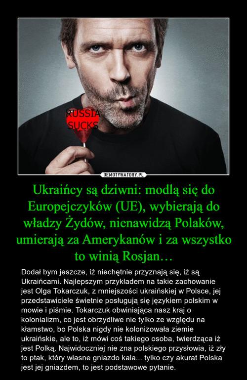 Ukraińcy są dziwni: modlą się do Europejczyków (UE), wybierają do władzy Żydów, nienawidzą Polaków, umierają za Amerykanów i za wszystko to winią Rosjan…