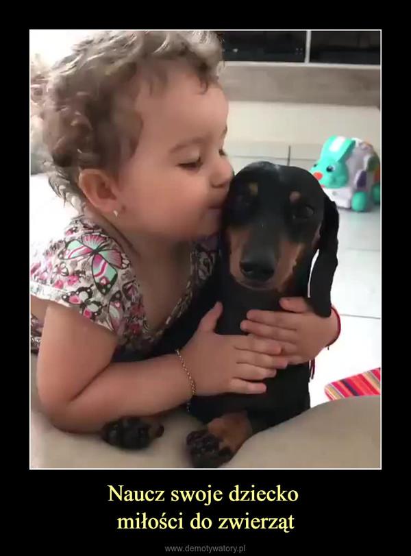 Naucz swoje dziecko miłości do zwierząt –