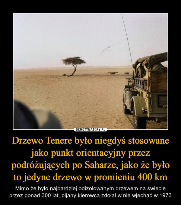 Drzewo Tenere było niegdyś stosowane jako punkt orientacyjny przez podróżujących po Saharze, jako że było to jedyne drzewo w promieniu 400 km