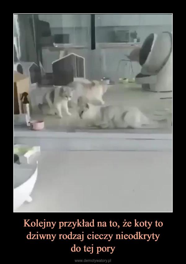 Kolejny przykład na to, że koty to dziwny rodzaj cieczy nieodkrytydo tej pory –