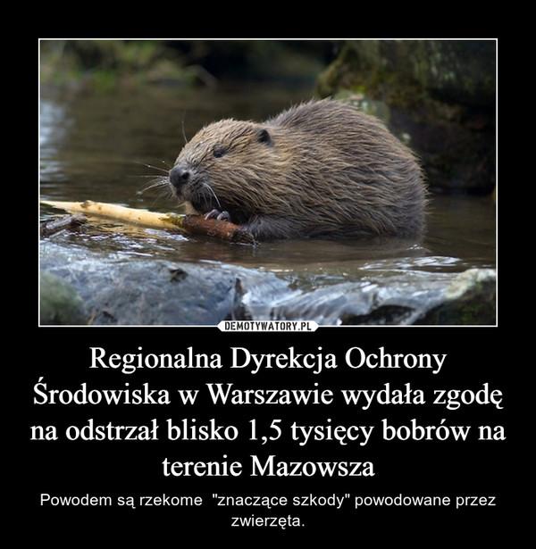 """Regionalna Dyrekcja Ochrony Środowiska w Warszawie wydała zgodę na odstrzał blisko 1,5 tysięcy bobrów na terenie Mazowsza – Powodem są rzekome  """"znaczące szkody"""" powodowane przez zwierzęta."""