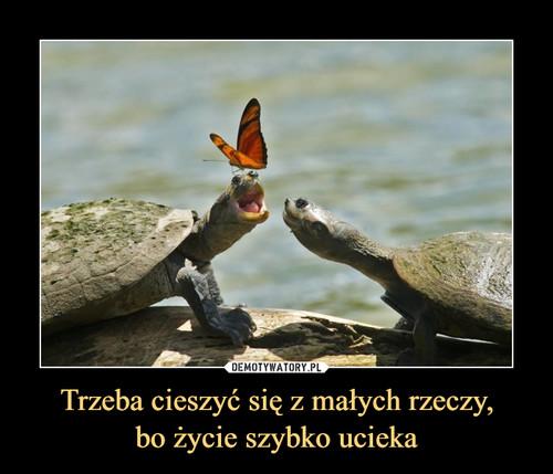 Trzeba cieszyć się z małych rzeczy, bo życie szybko ucieka