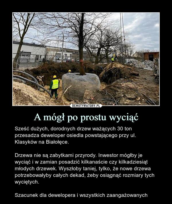 A mógł po prostu wyciąć – Sześć dużych, dorodnych drzew ważących 30 ton przesadza deweloper osiedla powstającego przy ul. Klasyków na Białołęce.Drzewa nie są zabytkami przyrody. Inwestor mógłby je wyciąć i w zamian posadzić kilkanaście czy kilkadziesiąt młodych drzewek. Wyszłoby taniej, tylko, że nowe drzewa potrzebowałyby całych dekad, żeby osiągnąć rozmiary tych wyciętych.Szacunek dla dewelopera i wszystkich zaangażowanych