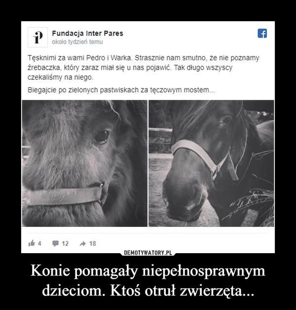 Konie pomagały niepełnosprawnym dzieciom. Ktoś otruł zwierzęta... –  9 Fundacja Inter Paresokoło tydzień temuTęsknimi za wami Pedro i Warka. Strasznie nam smutno, że nie poznamyźrebaczka, który zaraz miał się u nas pojawić. Tak długo wszyscyczekaliśmy na niego.Biegajcie po zielonych pastwiskach za tęczowym mostem.It 412A 18