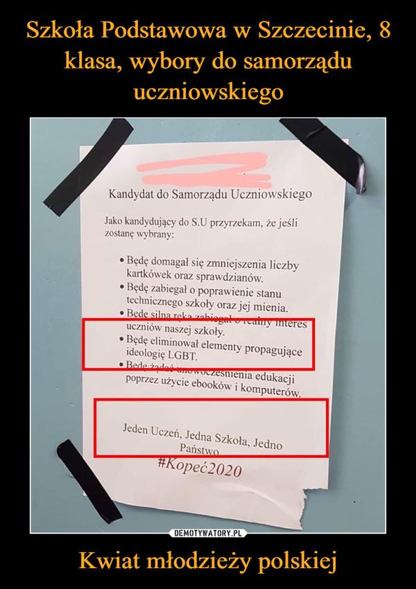 """Kwiat młodzieży polskiej –  Jako kandydujący do S.U przyrzekam, że jeślizostanę wybrany:* Będę domagał się zmniejszenia I iczbykartkówek oraz sprawdzianów.j * Będę zabiegał o poprawienie stanutechnicznego szkoły oraz Jej mienia.= Bedę silna zękanzabiegeło""""rztre TESuczniów naszej szkoły,* Będę eliminował elementy propagująceideologię LGBT.sede dać sie eko > ENIA EdukacjiPoprzez użycje ebooków i komputerów.Jeden Uczeń, Jedna Szkoła, JednoPaństwo"""