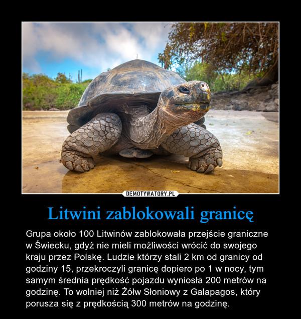 Litwini zablokowali granicę – Grupa około 100 Litwinów zablokowała przejście graniczne w Świecku, gdyż nie mieli możliwości wrócić do swojego kraju przez Polskę. Ludzie którzy stali 2 km od granicy od godziny 15, przekroczyli granicę dopiero po 1 w nocy, tym samym średnia prędkość pojazdu wyniosła 200 metrów na godzinę. To wolniej niż Żółw Słoniowy z Galapagos, który porusza się z prędkością 300 metrów na godzinę.