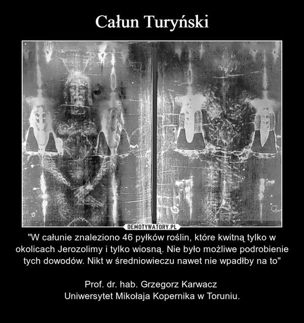 """– """"W całunie znaleziono 46 pyłków roślin, które kwitną tylko w okolicach Jerozolimy i tylko wiosną. Nie było możliwe podrobienie tych dowodów. Nikt w średniowieczu nawet nie wpadłby na to""""Prof. dr. hab. Grzegorz Karwacz Uniwersytet Mikołaja Kopernika w Toruniu."""
