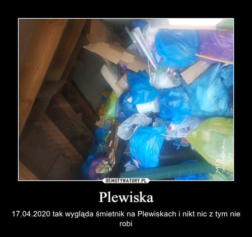 Plewiska