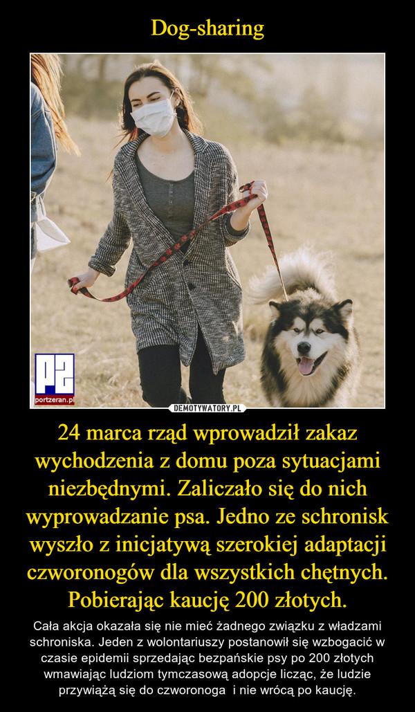 24 marca rząd wprowadził zakaz wychodzenia z domu poza sytuacjami niezbędnymi. Zaliczało się do nich wyprowadzanie psa. Jedno ze schronisk wyszło z inicjatywą szerokiej adaptacji czworonogów dla wszystkich chętnych. Pobierając kaucję 200 złotych. – Cała akcja okazała się nie mieć żadnego związku z władzami schroniska. Jeden z wolontariuszy postanowił się wzbogacić w czasie epidemii sprzedając bezpańskie psy po 200 złotych wmawiając ludziom tymczasową adopcje licząc, że ludzie przywiążą się do czworonoga  i nie wrócą po kaucję.