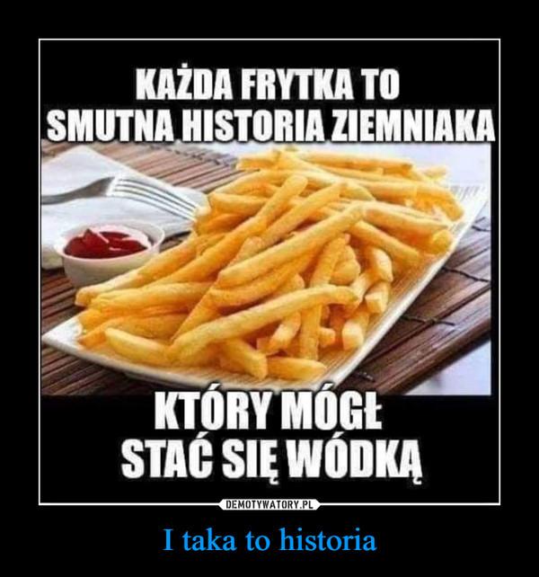 I taka to historia –  KAŻDA FRYTKA TOSMUTNA HISTORIA ZIEMNIAKAKTÓRY MÓGŁSTAĆ SIĘ WÓDKĄWODKA