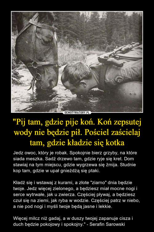"""""""Pij tam, gdzie pije koń. Koń zepsutej wody nie będzie pił. Pościel zaścielaj tam, gdzie kładzie się kotka"""