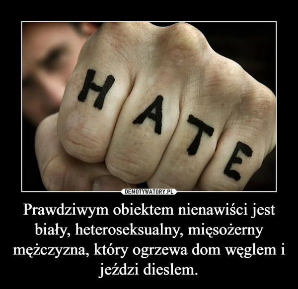 Prawdziwym obiektem nienawiści jest biały, heteroseksualny, mięsożerny mężczyzna, który ogrzewa dom węglem i jeździ dieslem. –