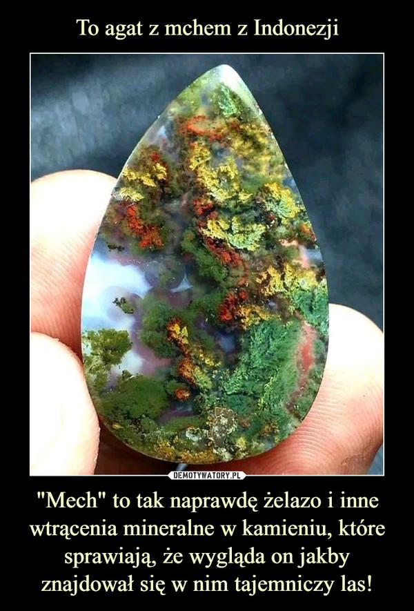 """""""Mech"""" to tak naprawdę żelazo i inne wtrącenia mineralne w kamieniu, które sprawiają, że wygląda on jakby znajdował się w nim tajemniczy las! –"""