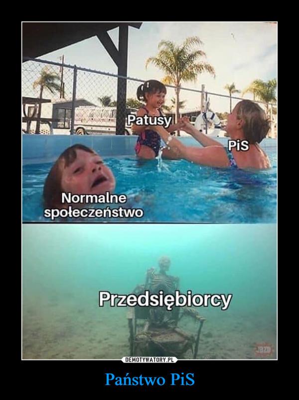 Państwo PiS –