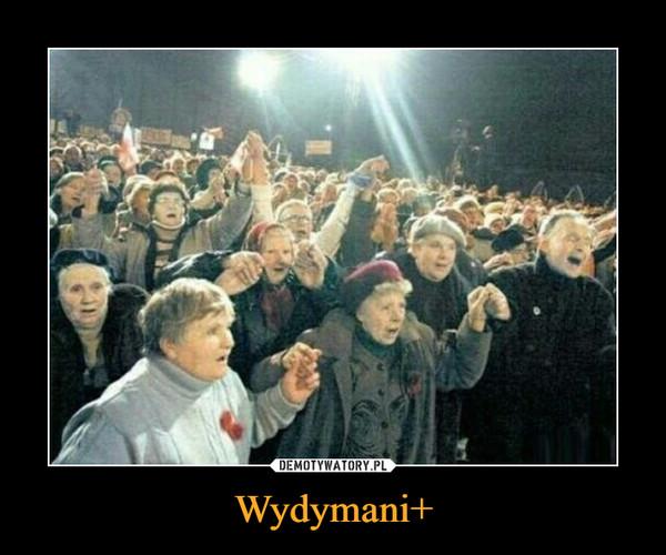 Wydymani+ –