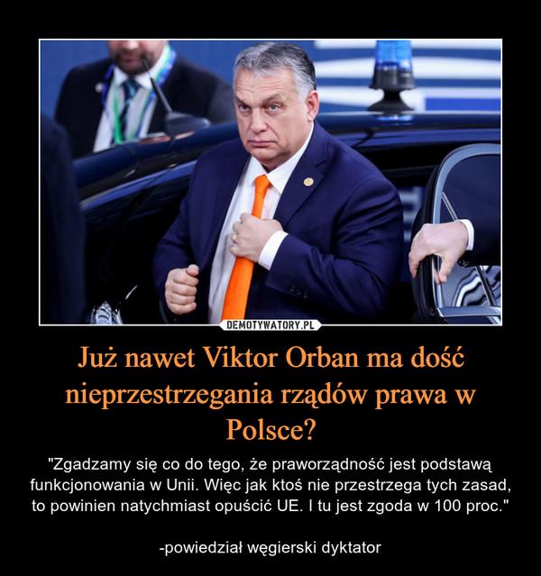 """Już nawet Viktor Orban ma dość nieprzestrzegania rządów prawa w Polsce? – """"Zgadzamy się co do tego, że praworządność jest podstawą funkcjonowania w Unii. Więc jak ktoś nie przestrzega tych zasad, to powinien natychmiast opuścić UE. I tu jest zgoda w 100 proc.""""-powiedział węgierski dyktator"""