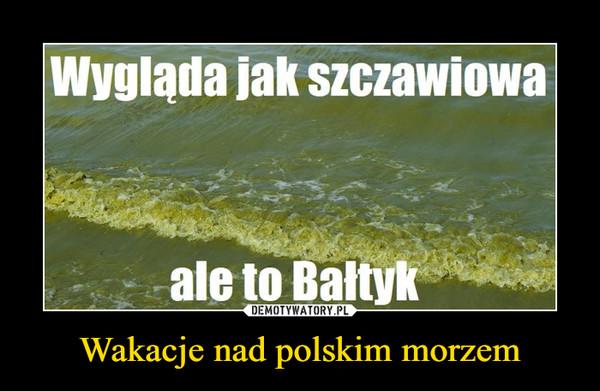 Wakacje nad polskim morzem –  Wygląda jak szczawiowa ale to Bałtyk