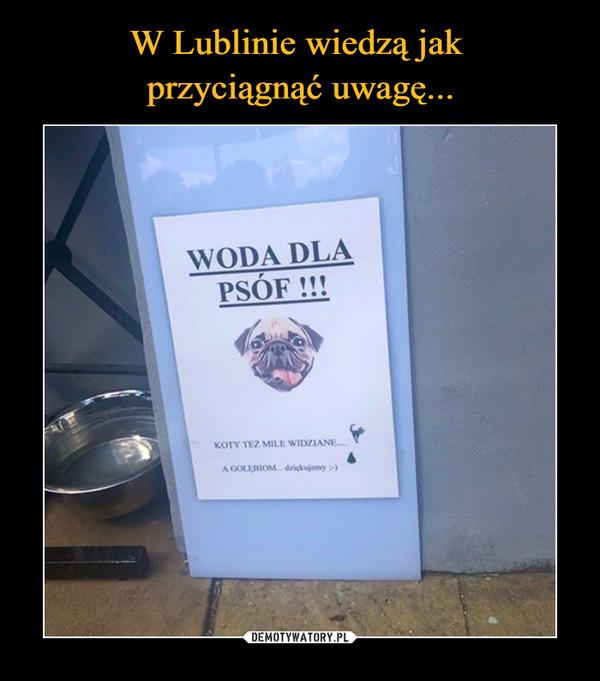 W Lublinie wiedzą jak  przyciągnąć uwagę...