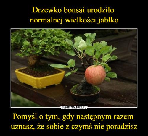 Drzewko bonsai urodziło  normalnej wielkości jabłko Pomyśl o tym, gdy następnym razem  uznasz, że sobie z czymś nie poradzisz