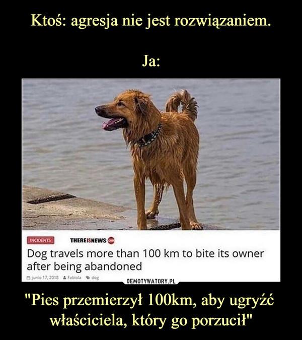 """""""Pies przemierzył 100km, aby ugryźć właściciela, który go porzucił"""" –"""