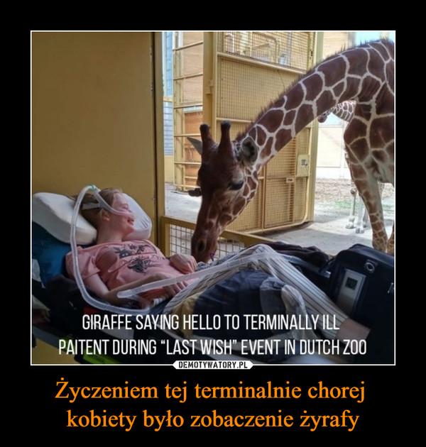 Życzeniem tej terminalnie chorej kobiety było zobaczenie żyrafy –