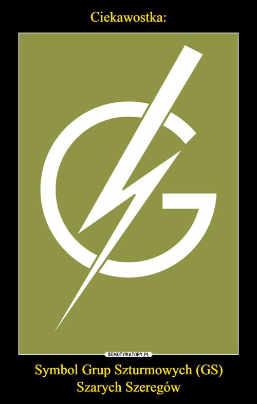 Ciekawostka: Symbol Grup Szturmowych (GS) Szarych Szeregów