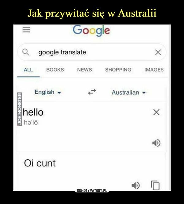 –  google translatehelloOi cunt